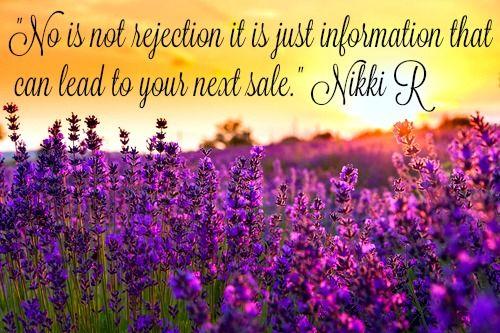 Sales Maven image for Nikki Rausch's blog