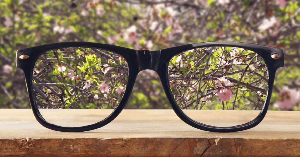 A pair of eyeglasses focusing on cherry blossoms